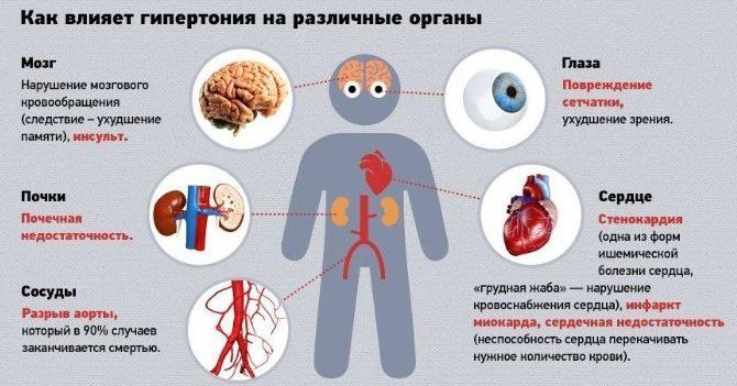 Влияние гипертонии на внутренние органы
