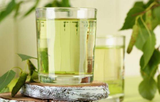 Березовый сок полезен при ВЧД