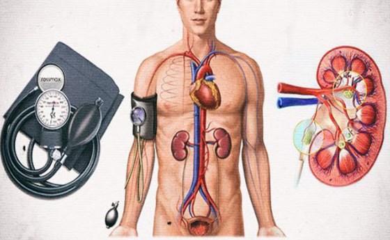 Повреждение почек пр гипертонии