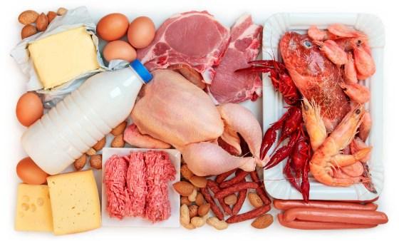 Ограничение потребления белка