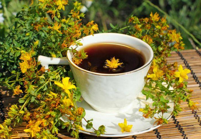 Чай из травы зверобой