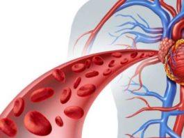 Давление в кровеносных сосудах