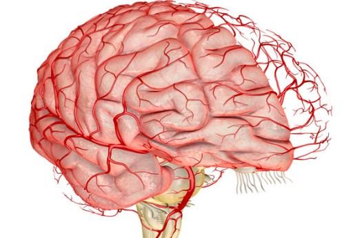 Усиление мозгового кровообращения